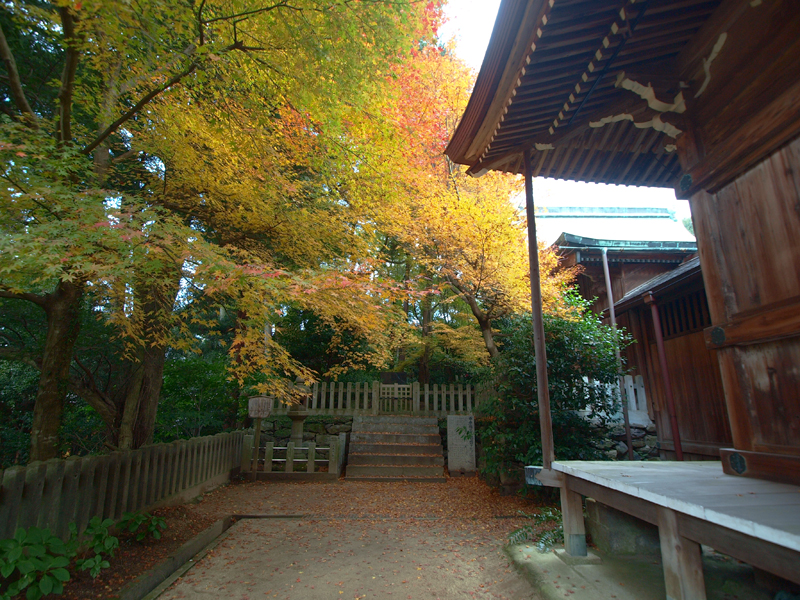 白峯寺の秋